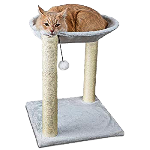 Cat Scratching Post with Hammock & Toy