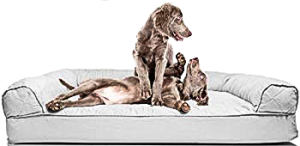 Orthopedic Sofa-Style Traditional Living Room Couch Pet Bed