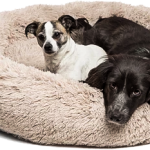 Top Best Calming Pet Bed 2021