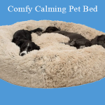 Best Comfy Calming Pet Bed Reviews 2021 - Pet Comfort Experts Recommend