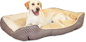 Self-Warming Lounge Sleeper Pet Bed