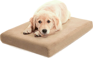Orthopedic Waterproof Memory Foam