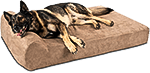 Orthopedic Dog Bed for Large