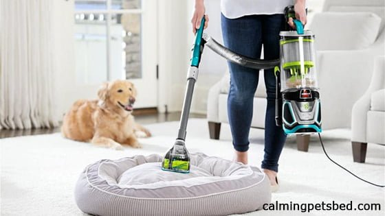 Can you wash dog calming bed
